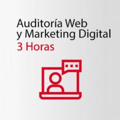 Auditoria Web y Marketing Digital - SIMPLE INFORMATICA